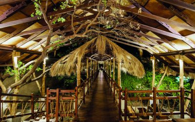 uga-jungle-beach-34435981-1467105370-imagegallerylightbox