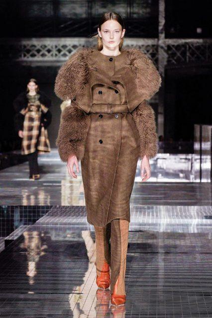 Shaggy Coats